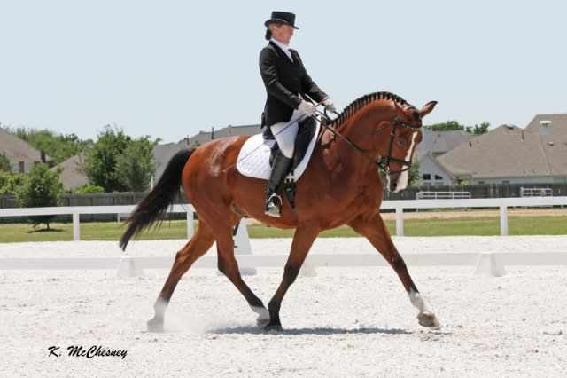 G-Force_Dressage
