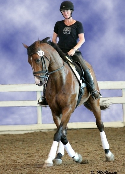 Beginner Advanced Dressage Lessons 1